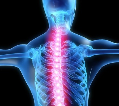 Chiropractor.8870333_std