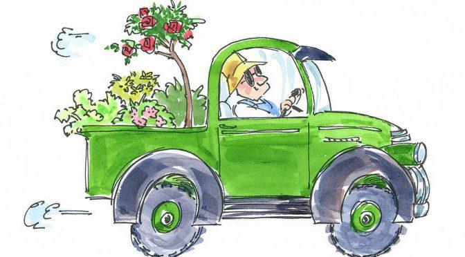 Plant Sale Deliveries